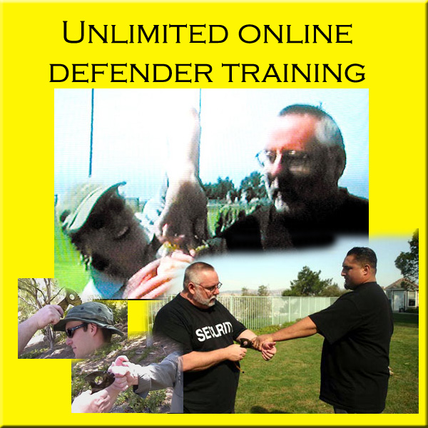 Unlimited defender online video training copy